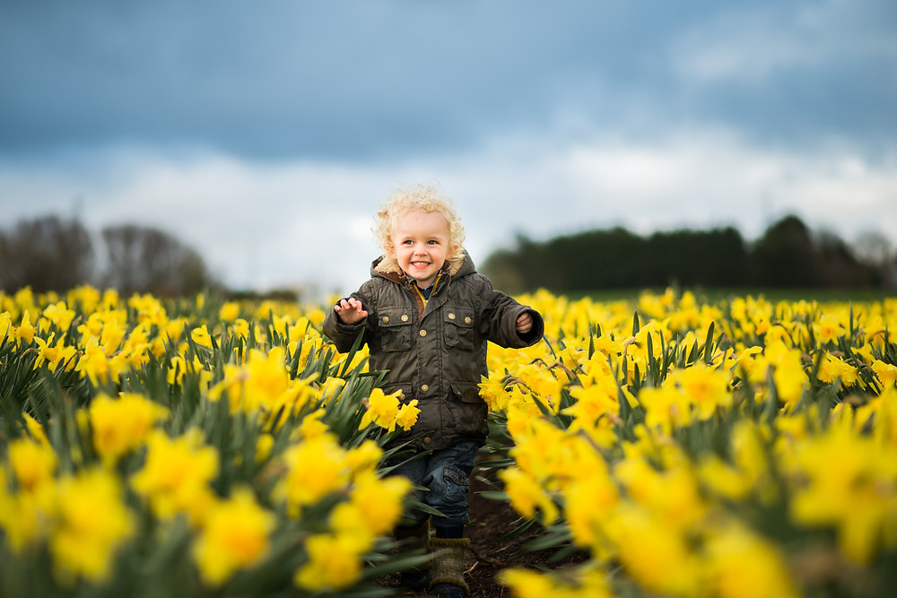 aberdeen-family-photographer-daffodil-field-boy-running