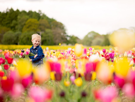 The Colorful Days | Aberdeen Family Photographer