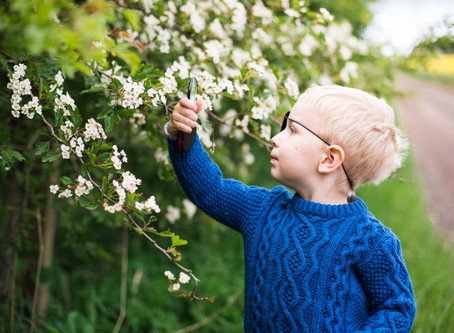 The best locations to welcome spring in Scotland | Aberdeen Angus Family Children Photographer