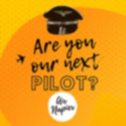 Pilot 2.png