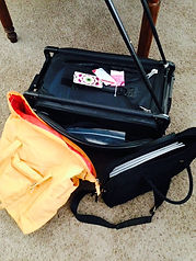 Sally Terry Quilt Show Luggage.JPG