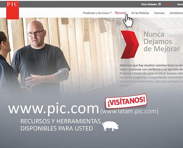 Pag web.jpg