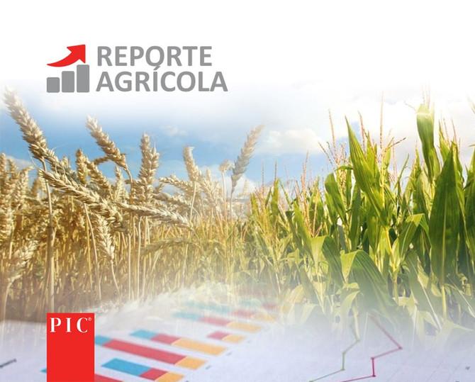 Boletín Agrícola, 20 Octubre