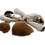 Equador dried mushroom