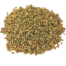 organic-rye-grain_edited.png