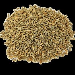 organic-rye-grain_edited-min.png