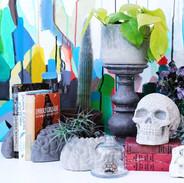 Skulls and Brains