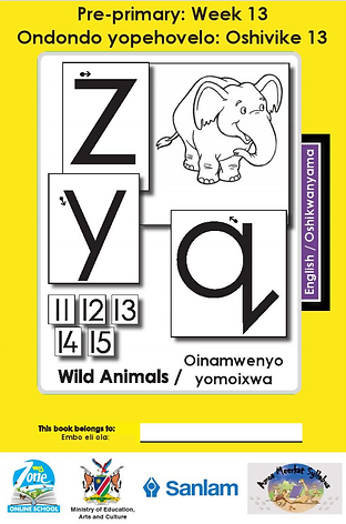 Zoshy Oshikwanyama Workbook