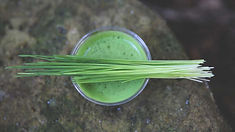 wheatgrass-shot-1296x728.jpg