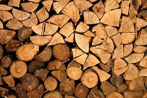 abstract-bark-cut-128639.jpg