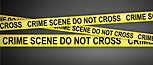 Murder, Manslaughter, Rape, Sex Crimes, Arson, Theft and Burglary, Robbery