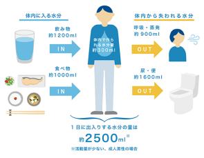 暑い日の水分補給