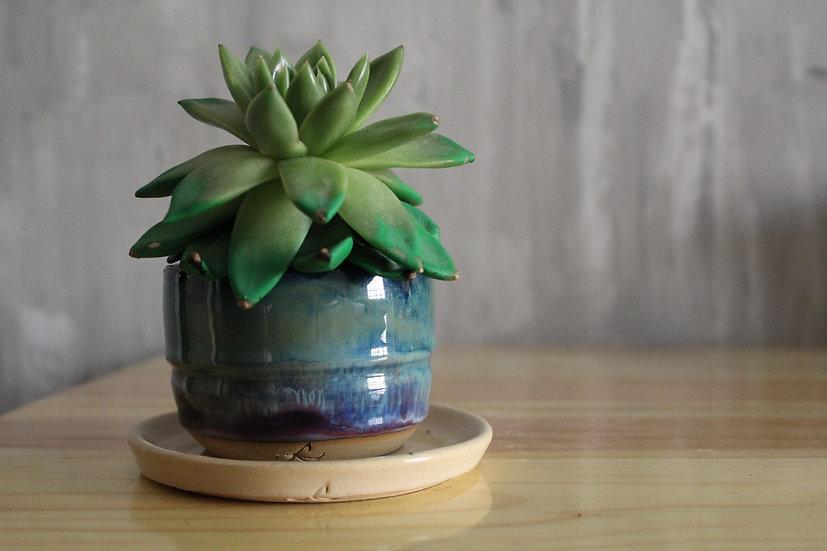 Mini Aurora Planter