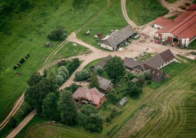 zemnieku saimniecība Liepiņas, Puikule, Aiva Grasberga