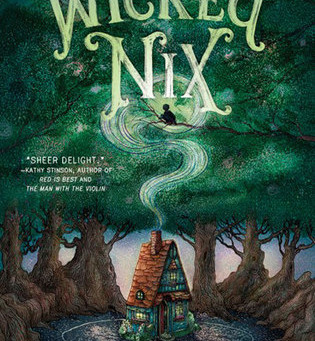 Cover Collection 9: Wicked Nix, by Lena Coakley