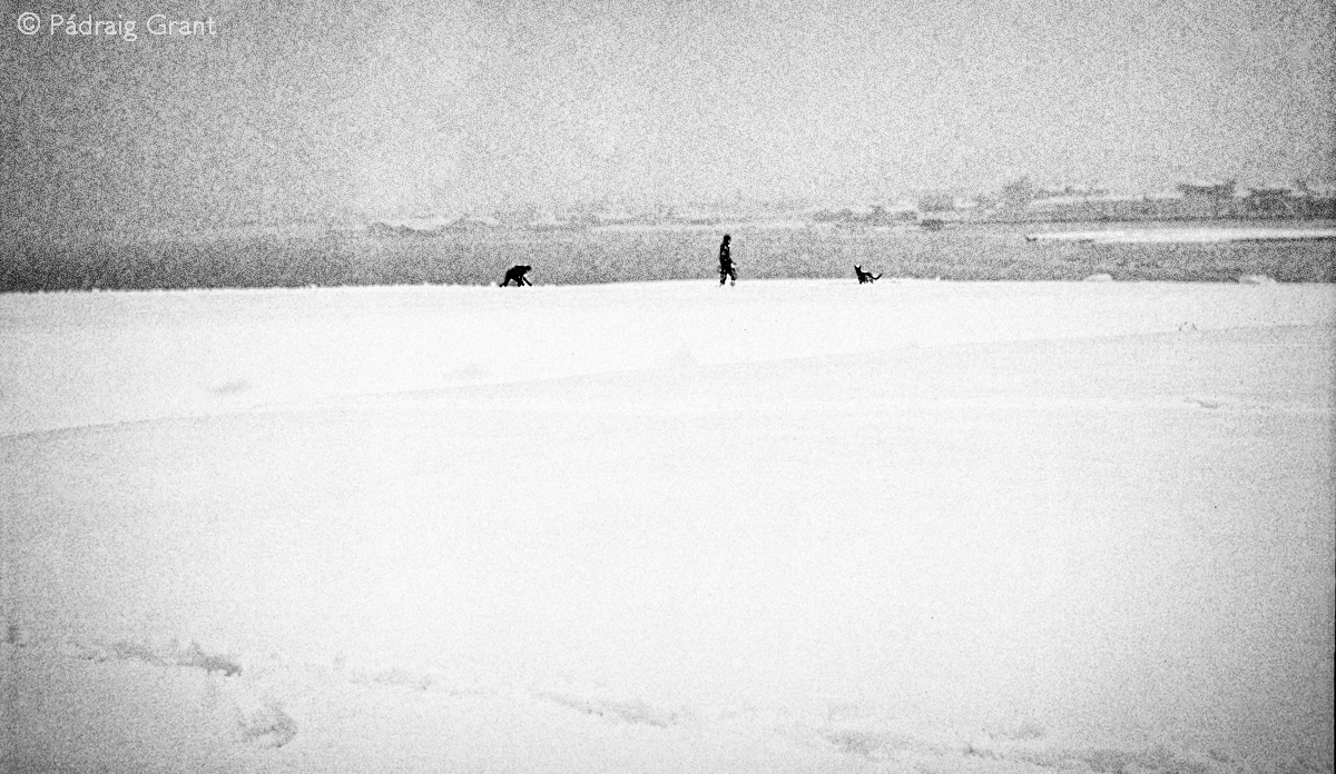 1991 Boy, Man, Dog, Snow