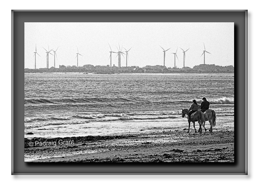 Turbines & Horses