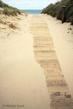 Boardwalk (Colour)