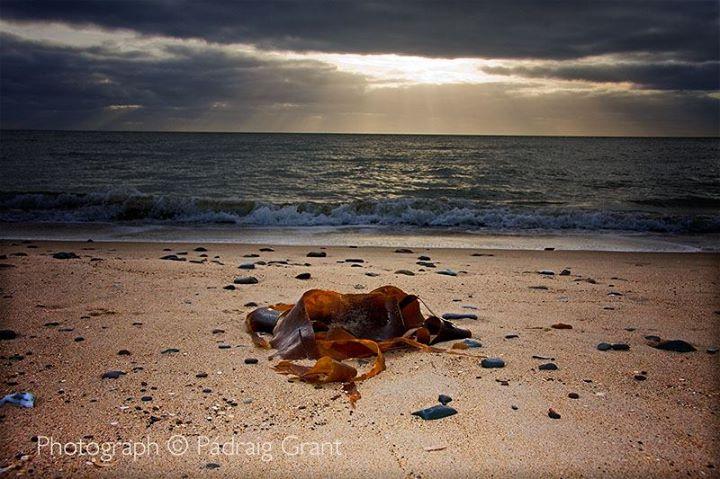 Ballinoulart Beach