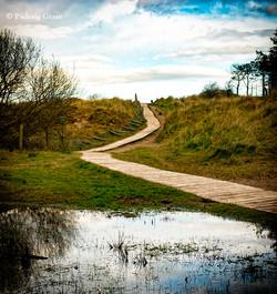 Culleton's Gap/Raven Wood 3627