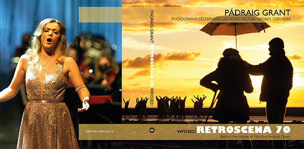 book cover-1-web.jpg