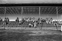 Bendigo Spectators