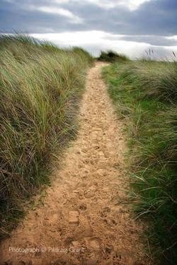 Long Path 2