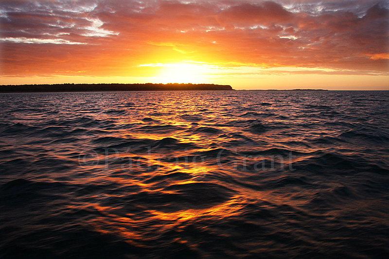 IMG_0200raven sunrise web.jpg