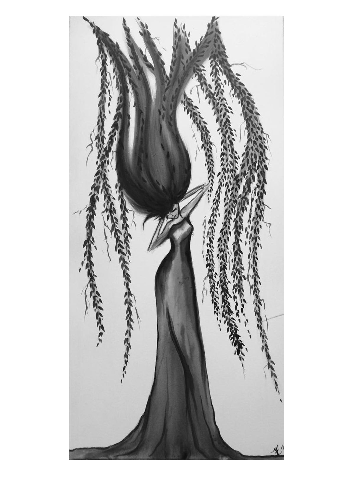 weeping willow.jpg