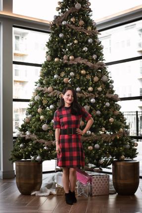 Christmas-Living-Model-DC