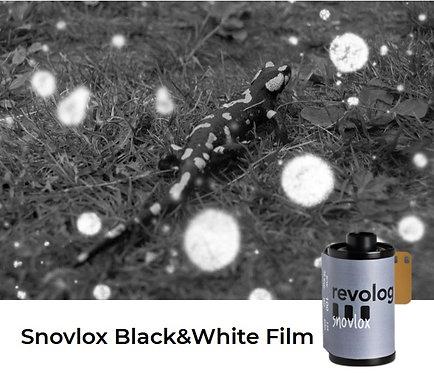 revolog Snovlox Black & White 100 Negative 35mm 36exp Film