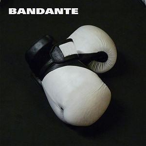 bandante bang bang front.jpg