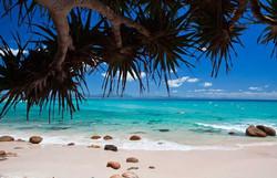 Belongil Beach Byron @Pacifique