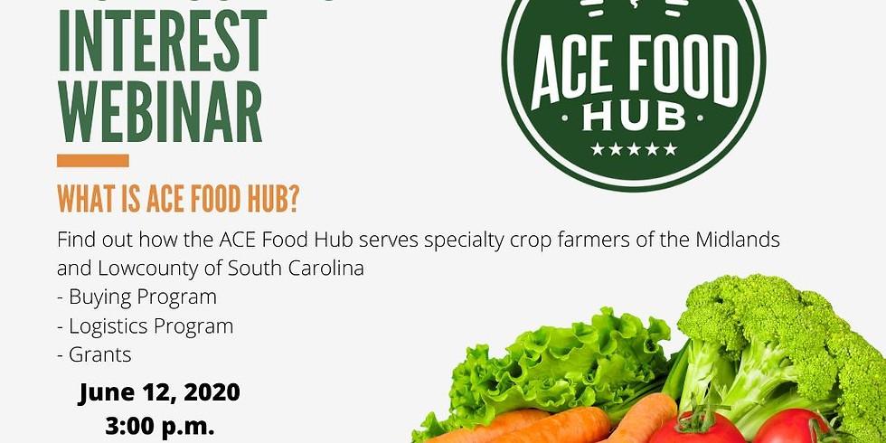 ACE Food Hub Interest Webinar