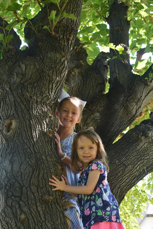Girls in Tree.JPG