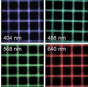 multi_colour_grids.png
