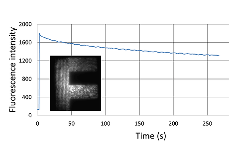 widefield_stabilityv2.png