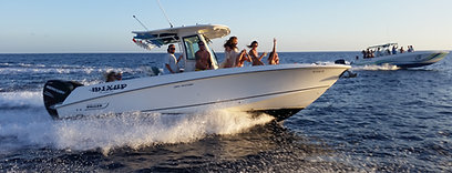 SOHO II (28′ Boston Whaler)