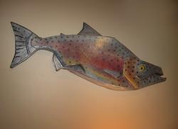 Rainbow Trout (2013)