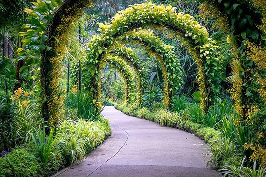 pow-golden-arches-in-singapore-s-botanic