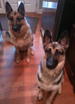 Keira & Berrin