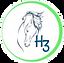 Image of H3-HopeHorsesNHeroes, 501c3, Monroe WA, Arleen Gibson
