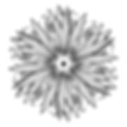 08364D98-C0C4-4D57-B1AD-B15134972669 15