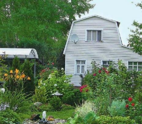 ¿Qué es la dacha? Tradición rusa por la casa de campo