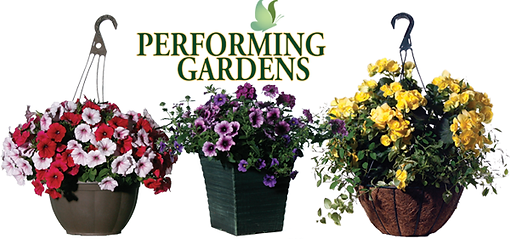 Timbuk Farms Performing Gardens Patio Planters and Hanging Baskets
