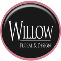 willow.png