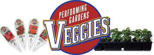 Performing Gardens Veggies by Timbuk Farms