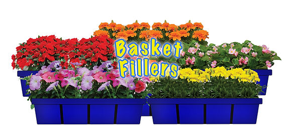 Basket Fillers by Timbuk Farms