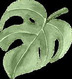 Multiply-Leaf2-275x300.png