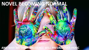 Novel Becoming Normal – why we think prudence will prevail over panic